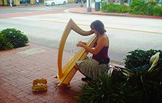 State Street Harp Player